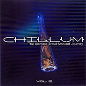 Chillum Vol. 2 - The Ultimate Tribal Ambient Journey by Various Artists