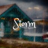 Storm: Better Sleep, Nature Sounds, Rain & Wind, Tranquil Evening, Relaxing Soundscapes, Lullaby de Deep Nap