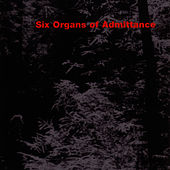 Six Organs Of Admittance by Six Organs Of Admittance