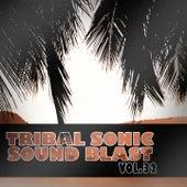 Tribal Sonic Soundblast,Vol.32 by Various Artists