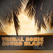 Tribal Sonic Soundblast,Vol.12 by Various Artists