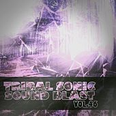 Tribal Sonic Soundblast,Vol.46 by Various Artists