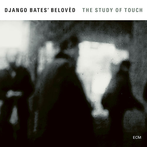 The Study Of Touch by Django Bates' Belovèd