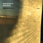 Incidentals by Tim Berne's Snakeoil