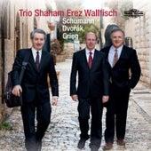 Trio Shaham, Erez, Wallfisch: Schumann, Dvořák, Grieg von Raphael Wallfisch