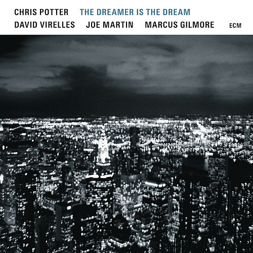 The Dreamer Is The Dream by Chris Potter