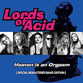 Heaven Is an Orgasm de Lords of Acid