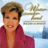Winterwunderland 2000 de Various Artists