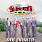 Qué Bonito by Los LLaneros de Guamúchil