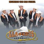 Regresan Con Más Fuerza by Los LLaneros de Guamúchil