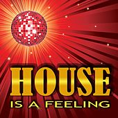 House Is a Feeling by Various Artists