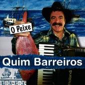 O Peixe by Quim Barreiros