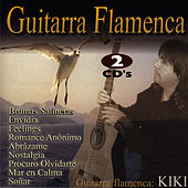 Guitarra Flamenca - Flamenco Guitar de 輝&輝(KIKI)
