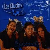 Qparanoia by Las Chuches