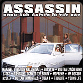 Born and Raised in the Bay by Various Artists