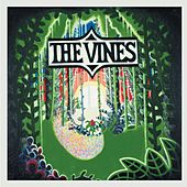 Highly Evolved von The Vines