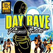 Day Rave Riddim von Various Artists