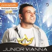 Laranjinha de Junior Viana