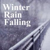 Winter Rain Falling von Various Artists