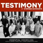 Testimony by Stephen Schwartz de Essential Voices USA