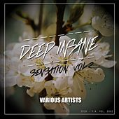Deep Insane Sensation, Vol. 2 - EP by Various Artists
