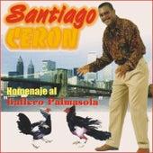 Homenaje al Gallero Palmasola by Santiago Ceron