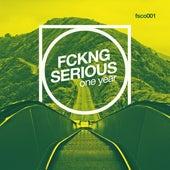 Fckng Serious - One Year de Various Artists