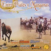 Entre Piales y Manganas by Various Artists