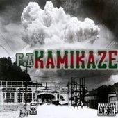 Kamikaze by Fa