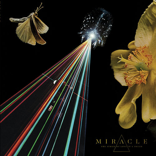 The Strife of Love in a Dream by Miracle