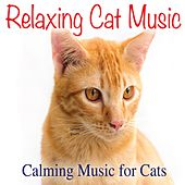 Relaxing Cat Music: Calming Music for Cats by Jay Oliver