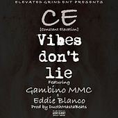 Vibes Don't Lie by CE Constant Elevation
