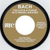Bach: Toccata & Fugue in D minor by David Hill