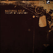 The Art Of Vibration by Natural Self