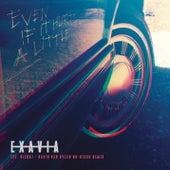 Even If It Hurts a Little (David Van Bylen Nu-Disco Remix) by Exavia