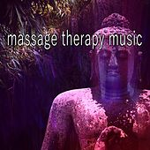 39 Tracks Harmony For The Mind von Massage Therapy Music