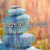 49 Sounds To Relax The Mind de Nature Sounds Artists