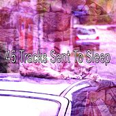 45 Tracks Sent To Sleep von Rockabye Lullaby