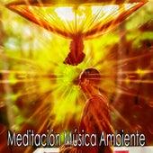 50 Peaceful Sound Ambience Tracks de Meditación Música Ambiente