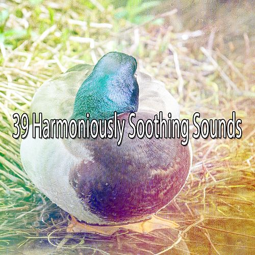 39 Harmoniously Soothing Sounds by S.P.A