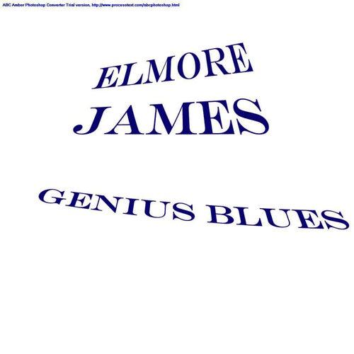 Genius Blues by Elmore James