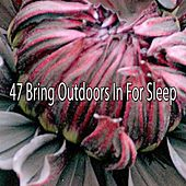 47 Bring Outdoors In For Sleep by White Noise For Baby Sleep