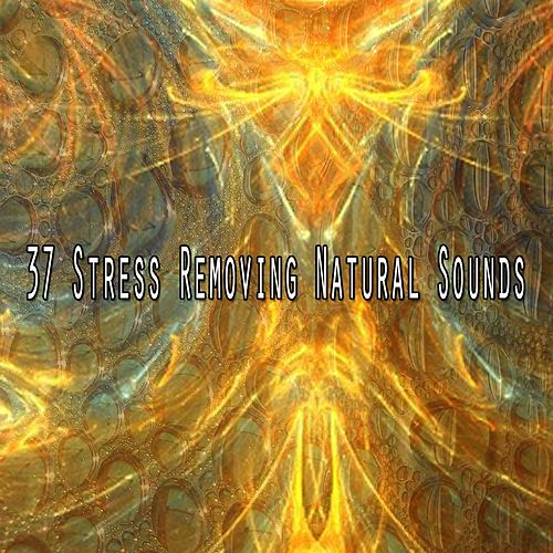 37 Stress Removing Natural Sounds by Nature Sound Series