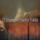 25 Stormy Ambience Tracks by Thunderstorm