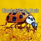 45 Tracks Of Classic Nature by Classical Study Music (1)