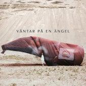 Väntar på en Ängel by Oskar Linnros