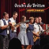 20 Jahre Jodelzirkus (Live) by Oesch's Die Dritten