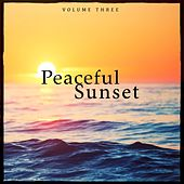 Peaceful Sunset, Vol. 3 (Lounge & Down Beat Tunes For Beach Bar, Cocktail Bar And Restaurant) by Various Artists