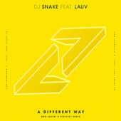 A Different Way (Bro Safari & ETC!ETC! Remix) by DJ Snake