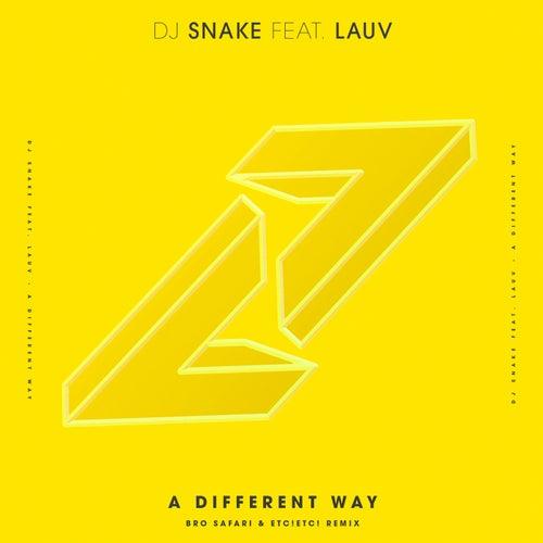 A Different Way (Bro Safari & ETC!ETC! Remix) by DJ Snake